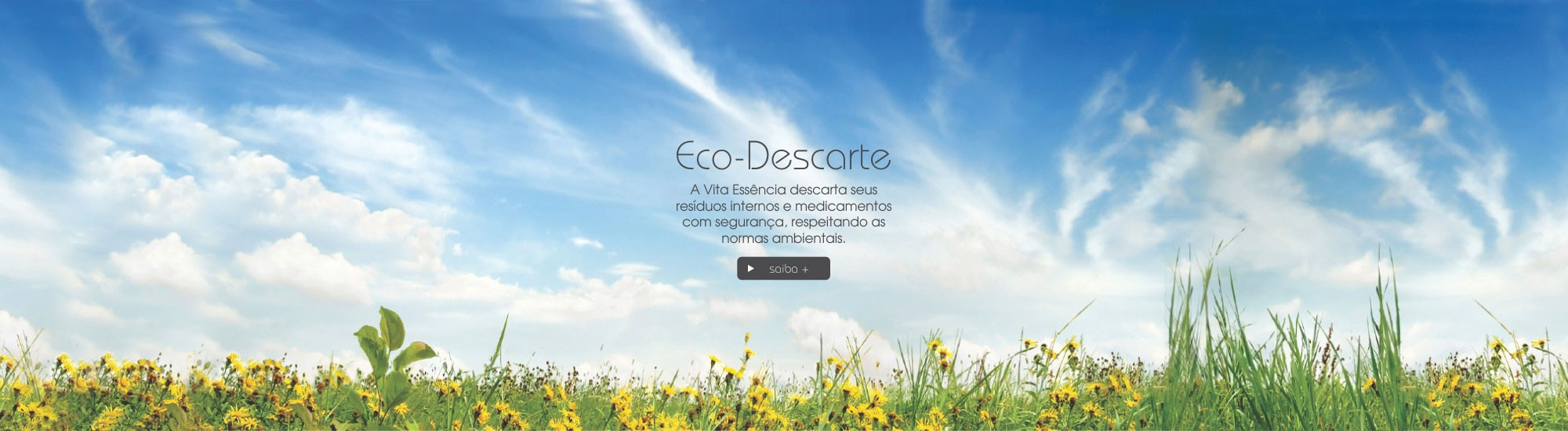 Eco Descarte